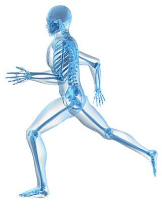 fysiotherapie veldhoven